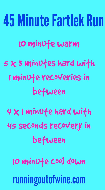 45 minute fartlek run