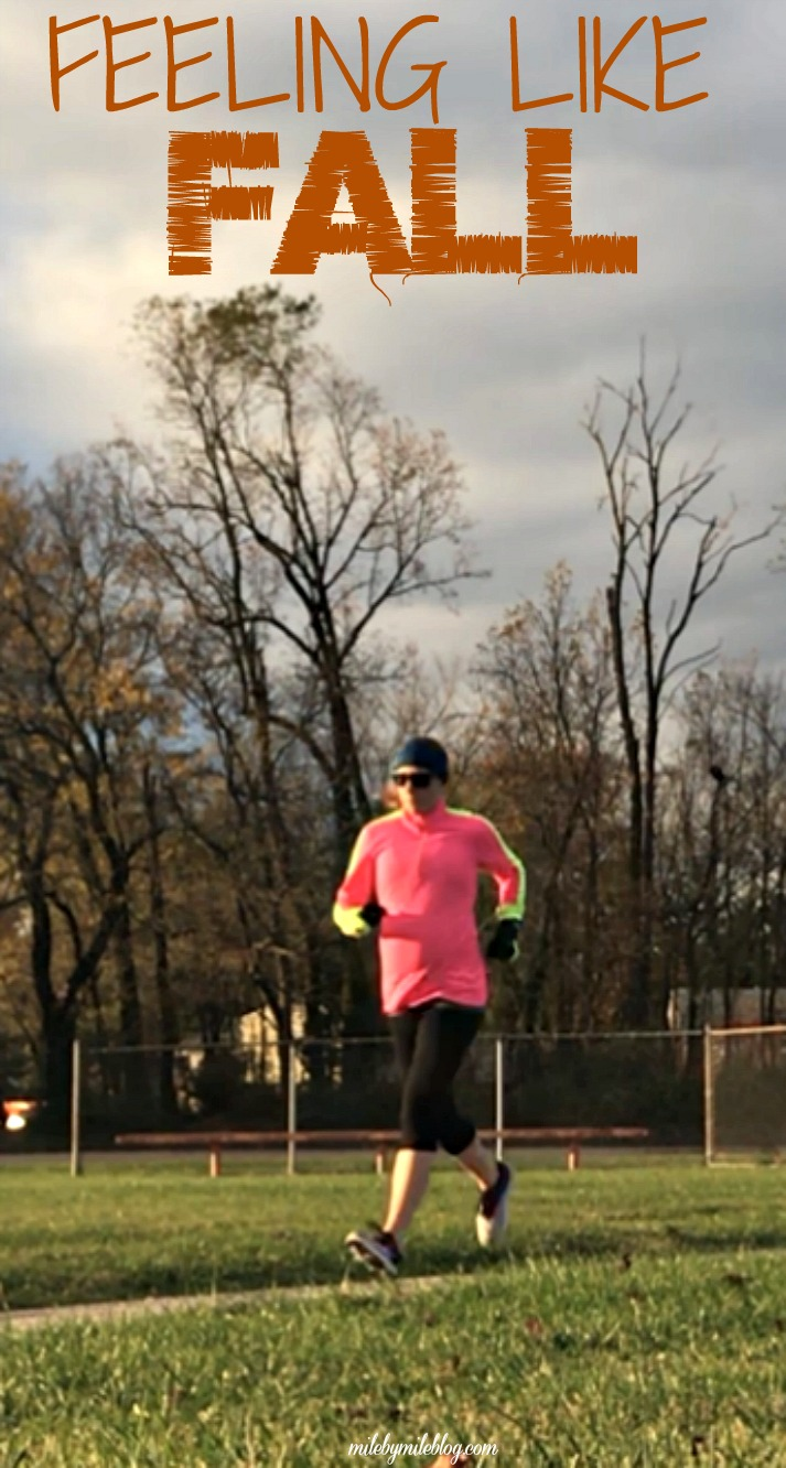 It only took until the middle of November, but it's finally feeling like fall around here. That also means lots of rain and wind! Click post to read about last week's workouts at 33 weeks pregnant. #running #fall #pregnancy