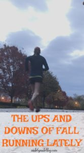It's been a weird fall so far, but lately running has been pretty great. In this week's weekly wrap I'm sharing some of the ups and downs of fall running, including how different a run can be from one day to the next during pregnancy.